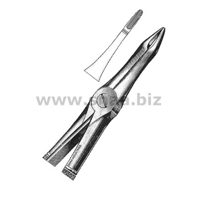 Extracting Forceps English Pattern, Fig. 41