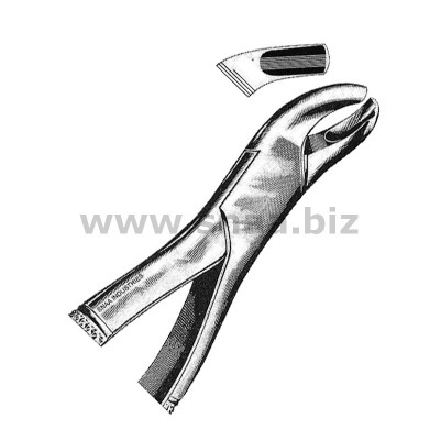Tooth Extracting Forceps American Pattern fig.18L