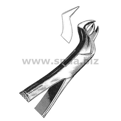 Tooth Extracting Forceps American Pattern fig.88 R