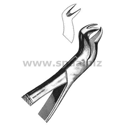 Tooth Extracting Forceps American Pattern fig.88 L
