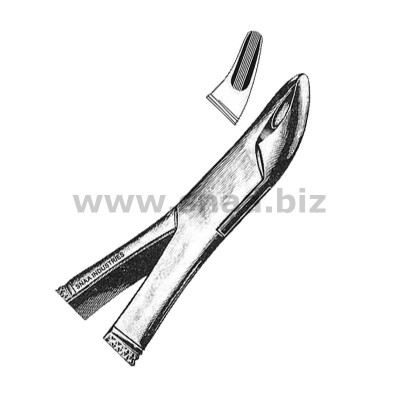 Tooth Extracting Forceps American Pattern fig.101