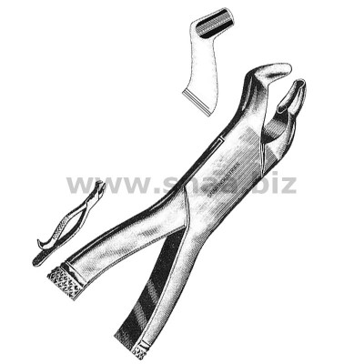 Tooth Extracting Forceps American Pattern fig.210H