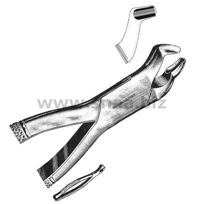 Tooth Extracting Forceps American Pattern fig.210s